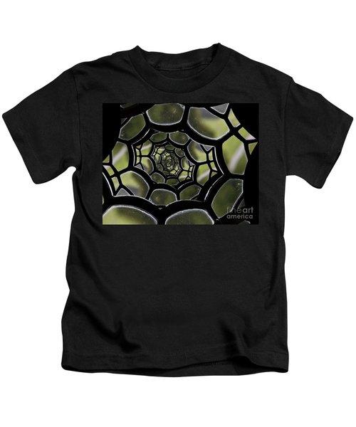 Spider's Web. Kids T-Shirt