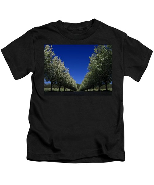 Spring Tunnel Kids T-Shirt