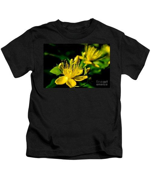 St John's Wort Kids T-Shirt