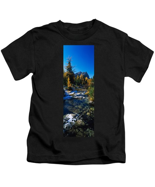 Stream Flowing In A Forest, Mount Kids T-Shirt