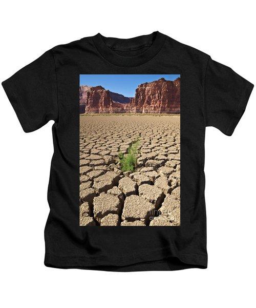 Tamarisk In Dry Colorado River Kids T-Shirt