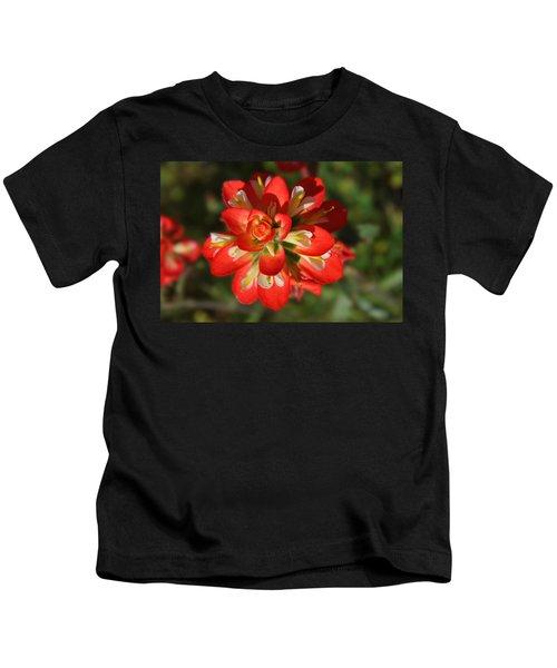 Texas Paintbrush Kids T-Shirt