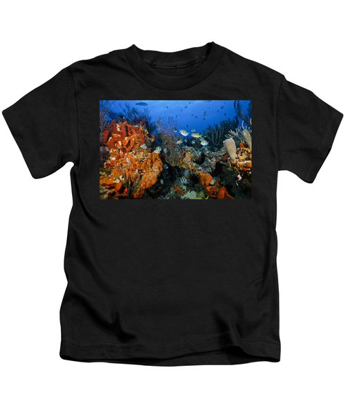 The Active Reef Kids T-Shirt