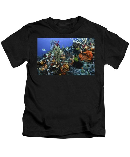 The Busy Reef Kids T-Shirt