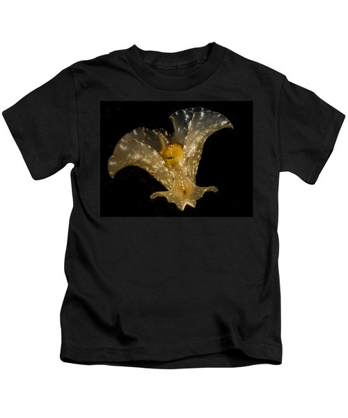 The Flying Aplysia Brasiliana Two Kids T-Shirt