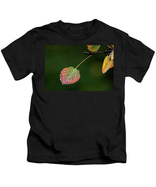 The Latter Rain  Kids T-Shirt