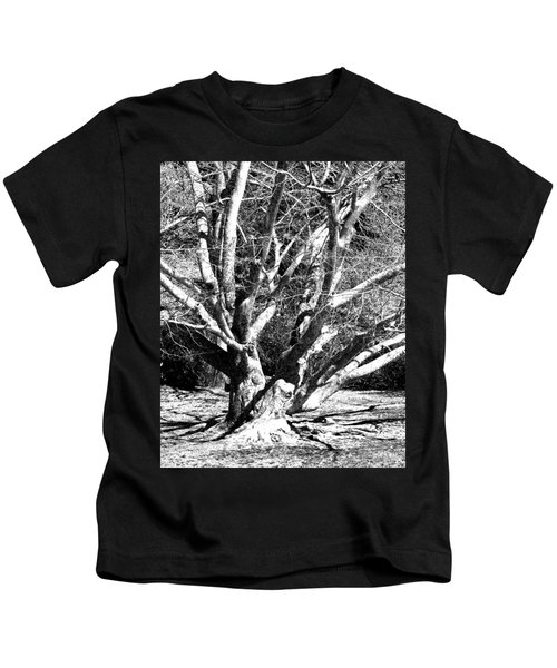 Tree Study In Black N White Kids T-Shirt