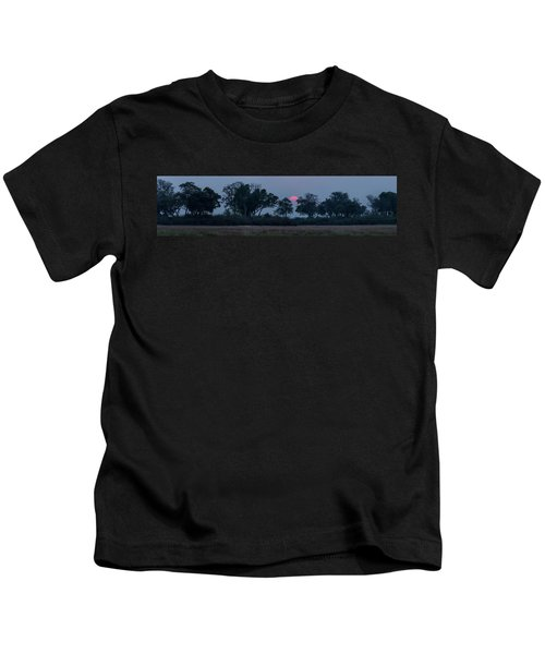 Trees In A Forest At Dusk, Kings Pool Kids T-Shirt