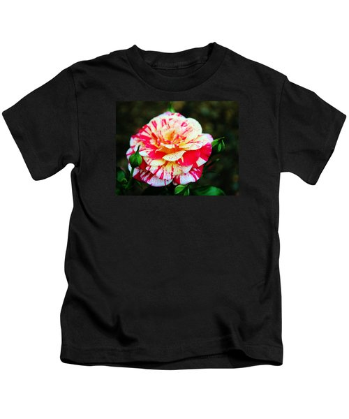 Two Colored Rose Kids T-Shirt