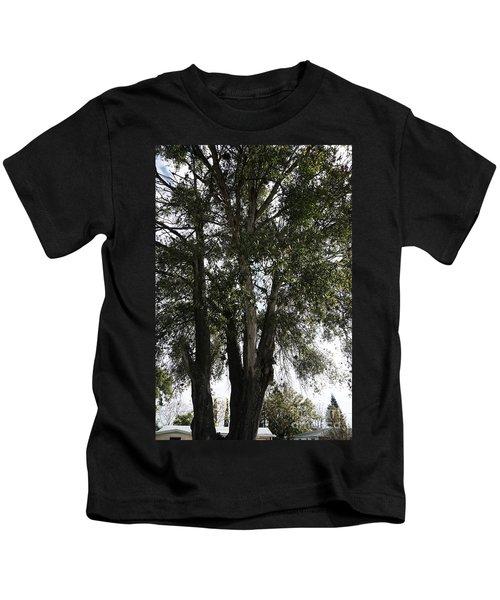 Up-view Of Oak Tree Kids T-Shirt