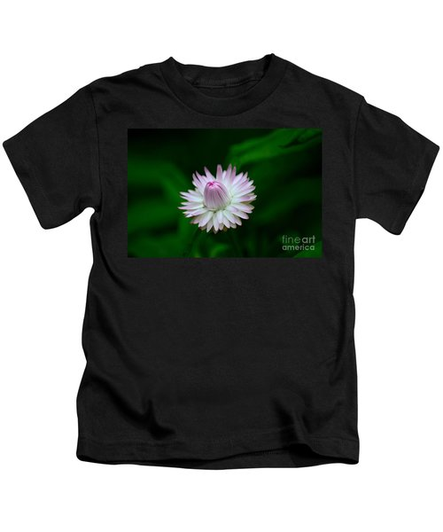 Violet And White Flower Sepals And Bud Kids T-Shirt