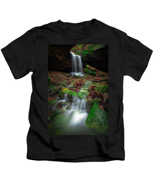 Frankfort Mineral Springs Waterfall  Kids T-Shirt