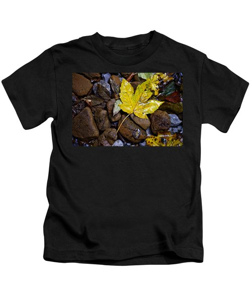 Wet Autumn Leaf On Stones Kids T-Shirt