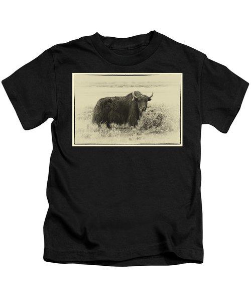 Yaks...the Official Animal Of Tibet Kids T-Shirt