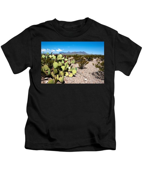 Big Bend Kids T-Shirt