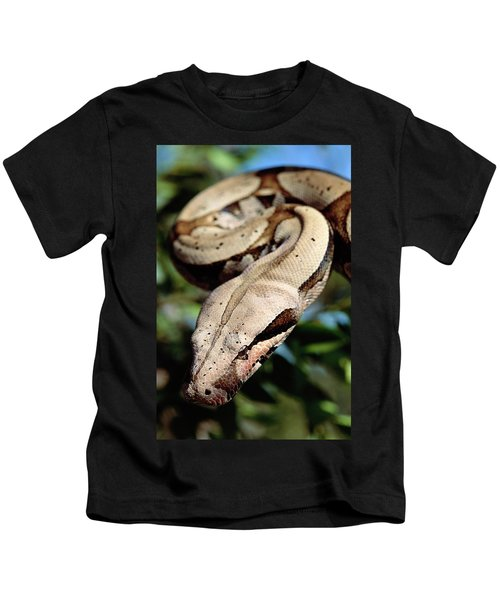 Boa Constrictor Boa Constrictor Kids T-Shirt by Claus Meyer