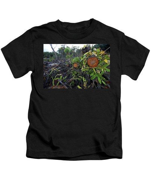 Clear Cut Red Mangrove Stand Kids T-Shirt