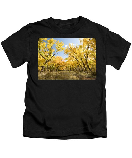 Fall Leaves In New Mexico Kids T-Shirt