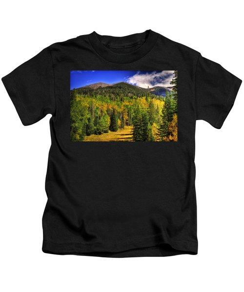 Fall On The Mountain  Kids T-Shirt