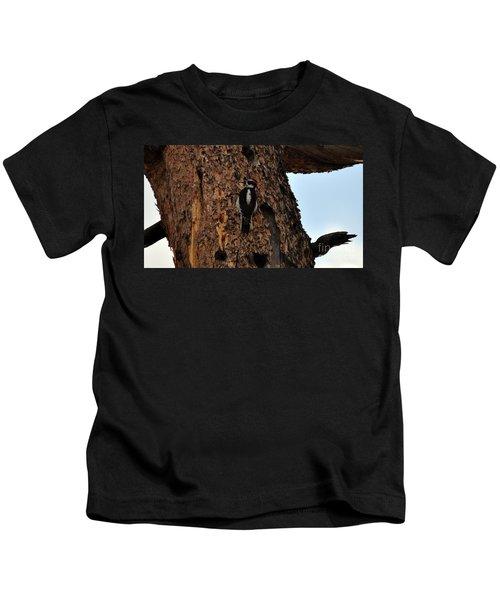 Hairy Woodpecker On Pine Tree Kids T-Shirt
