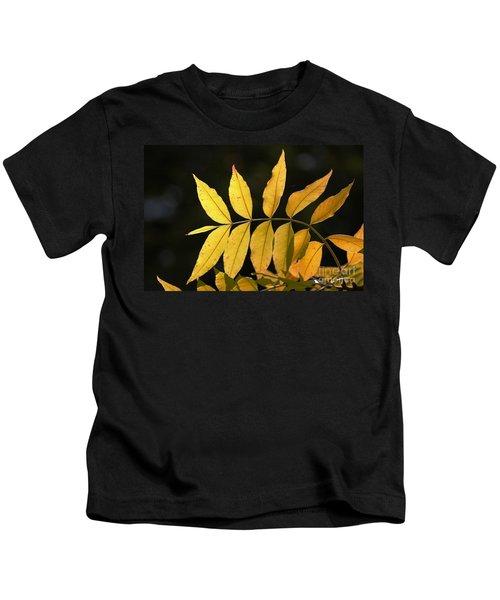 Leaves Of Fall Kids T-Shirt