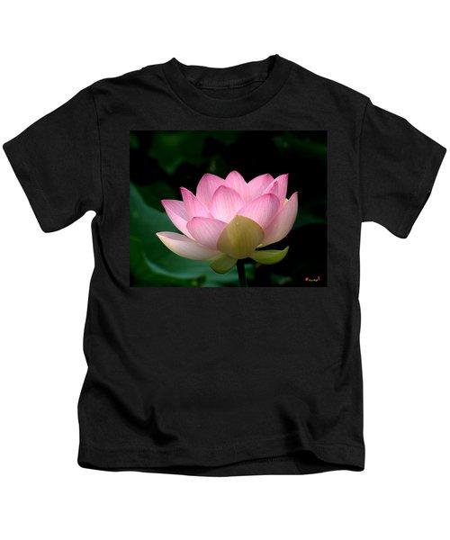 Lotus Beauty--blushing Dl003 Kids T-Shirt