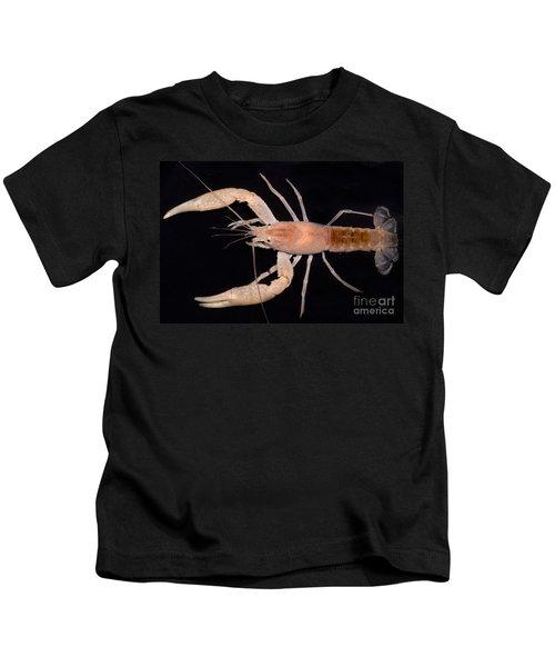Miami Cave Crayfish Kids T-Shirt