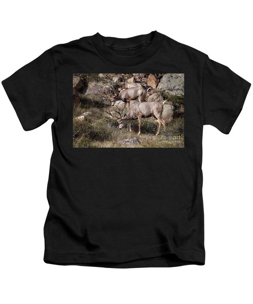 Mule Deer Bucks Kids T-Shirt