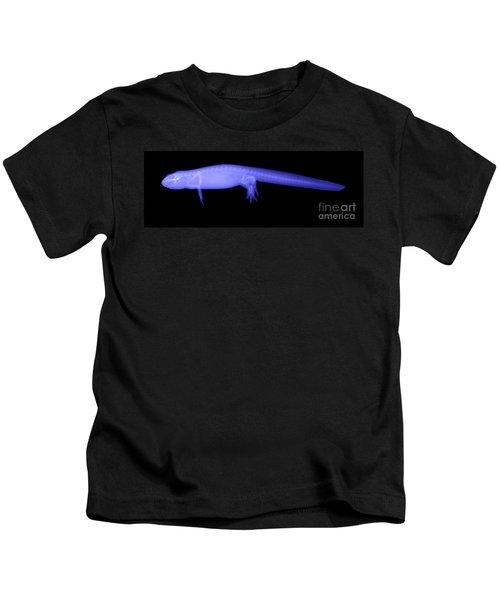 Newt Kids T-Shirt by Ted Kinsman