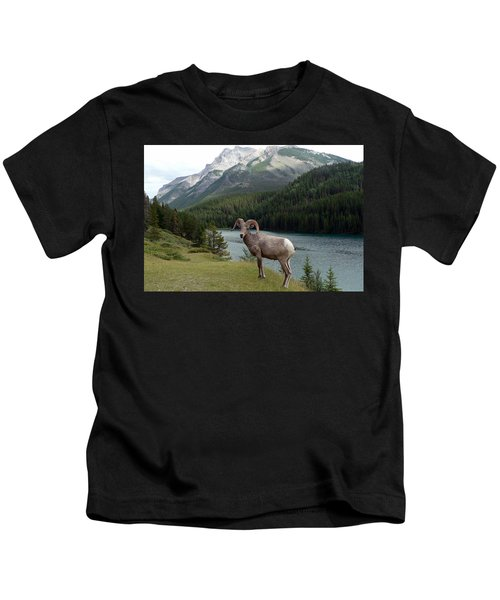 Portrait Of A Bighorn Sheep At Lake Minnewanka  Kids T-Shirt