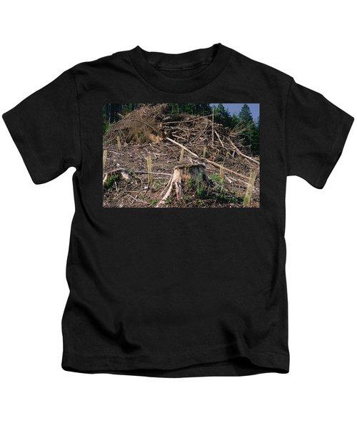 Replant Of Douglas Fir Pseudotsuga Kids T-Shirt