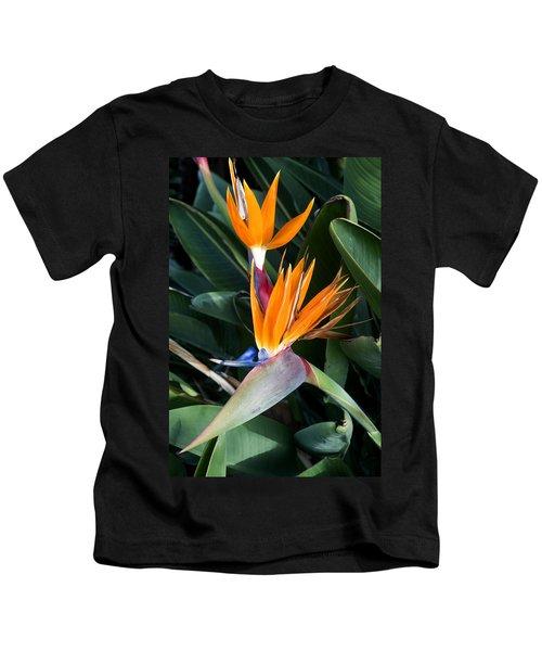 Strelitzia Reginae Kids T-Shirt