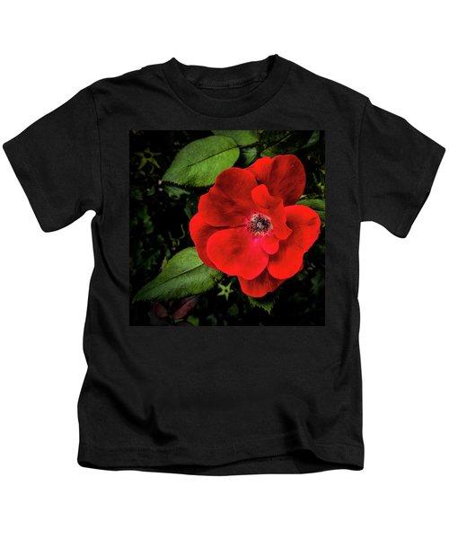 A Knockout Kids T-Shirt