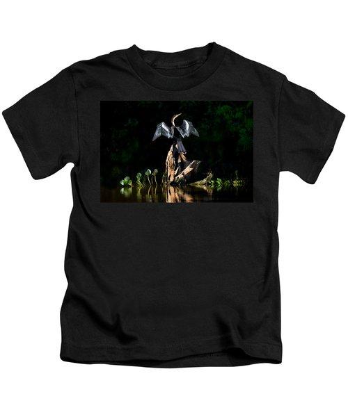 Anhinga Anhinga Anhinga, Pantanal Kids T-Shirt by Panoramic Images