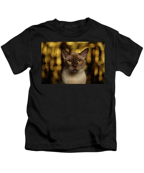 Closeup Portrait Burmese Cat On Happy New Year Background Kids T-Shirt