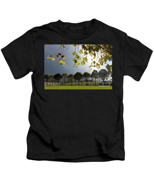 Denbies Vineyard Surrey Uk Kids T-Shirt