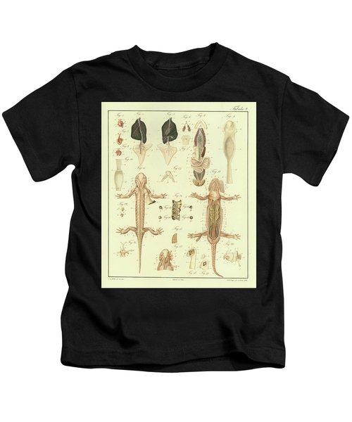 Fire Salamander Anatomy Kids T-Shirt