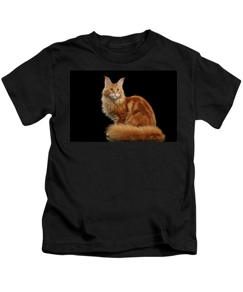 Ginger Maine Coon Cat Isolated On Black Background Kids T-Shirt