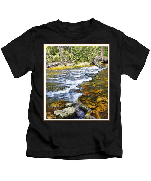 Pennsylvania Mountain Stream Kids T-Shirt