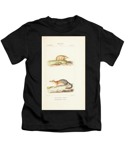 Planches  By Paul Gervais Kids T-Shirt