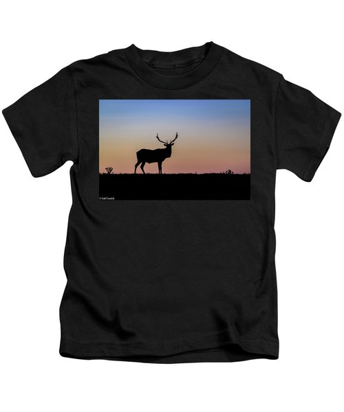 Point Reyes Elk Kids T-Shirt
