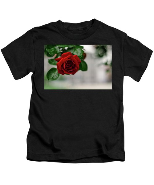 Roses In The City Park Kids T-Shirt