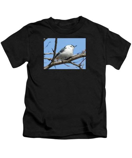 White-breasted Nuthatch Kids T-Shirt