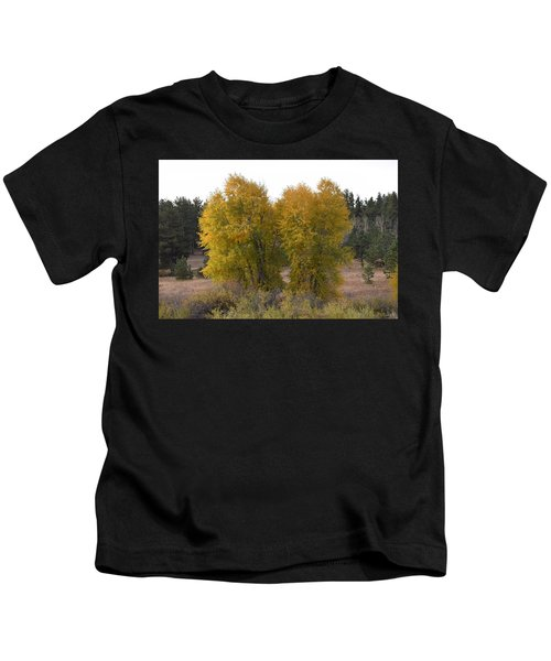 Aspen Trees In The Fall Co Kids T-Shirt