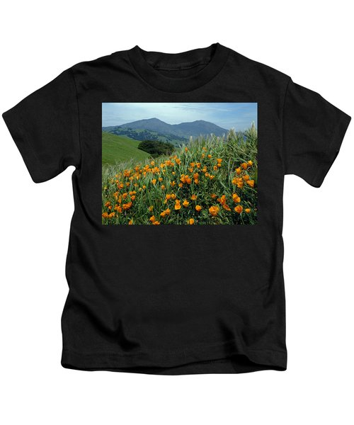1a6493 Mt. Diablo And Poppies Kids T-Shirt