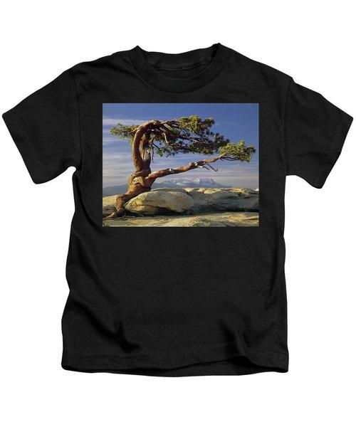 1m6701 Historic Jeffrey Pine Sentinel Dome Yosemite Kids T-Shirt