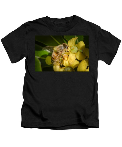 Bees Gathering From Pittosporum Flowers Kids T-Shirt