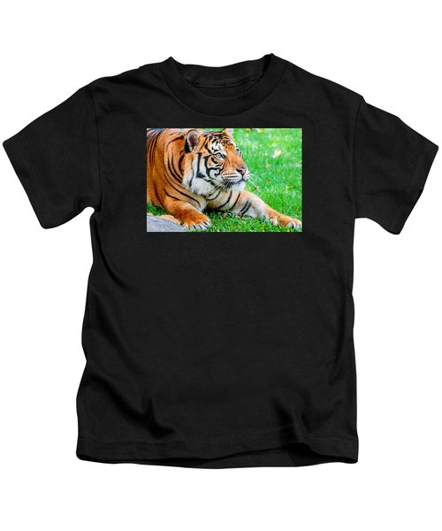 Pre-pounce Tiger Kids T-Shirt