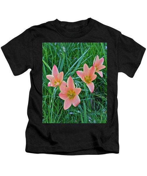 2015 Spring At The Gardens Meadow Garden Tulips 3 Kids T-Shirt