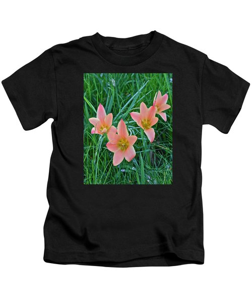 2015 Spring At The Gardens Meadow Garden Tulips 3 Kids T-Shirt